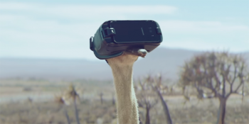 Be Inspired By The Flying Ostrich